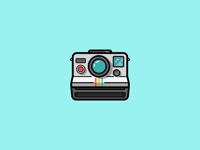 snapshots showcase