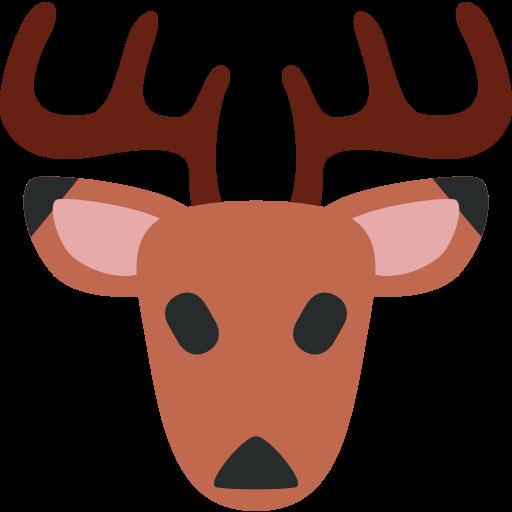 Deer FlashLoan Protocol