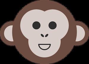 Storage Monkey showcase