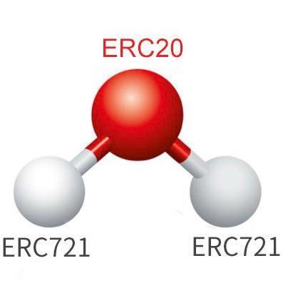 Molecule Protocol
