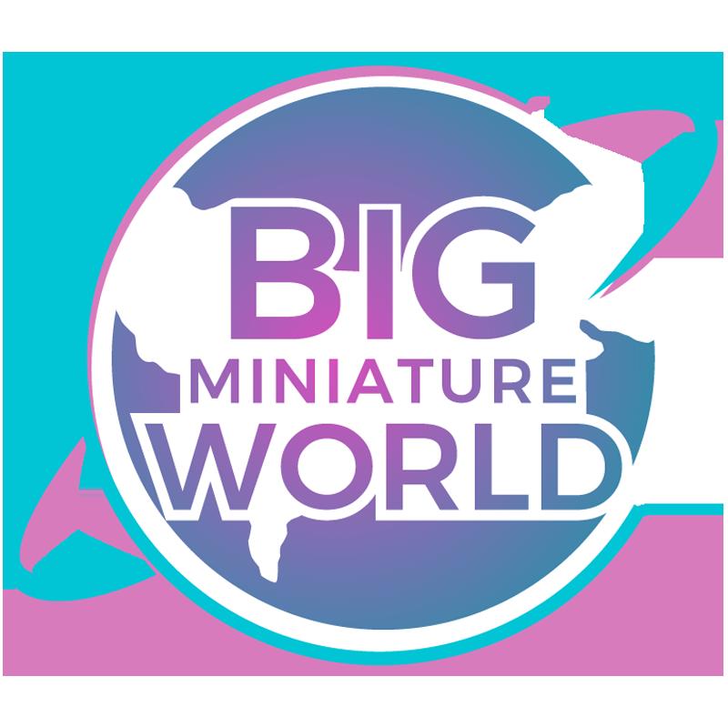 Big Miniature Tokens